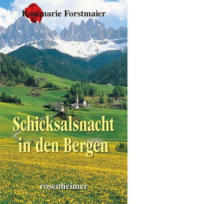 Schicksalsnacht in den Bergen (E-Book)